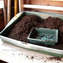 starting seeds - sowing station, peat and small tray