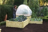 Superior Raised Beds GDN-474 Harrod Hort