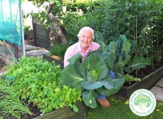 Laurence Ireland in vegetable garden