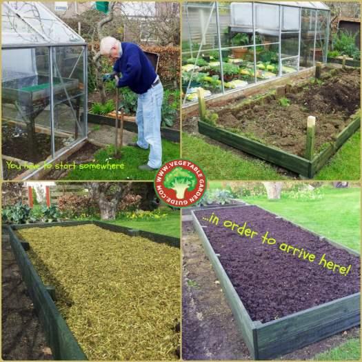 Raised bed vegetable gardening.