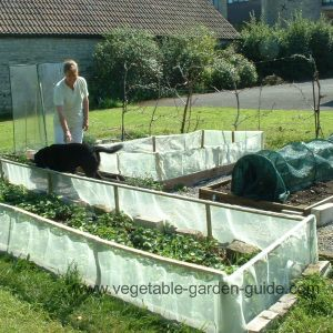 Building Raised Bed System