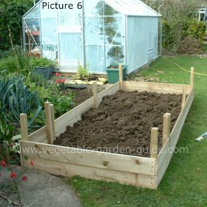 Building raised beds for easier successfull vegetable growing