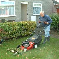 shredding for Garden Compost