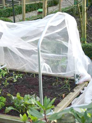 Harrod Horticultural Covered Raised Bed System